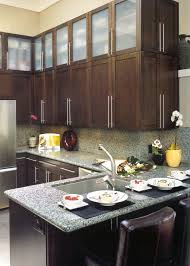 Kitchen X Panel Glass Cabinets Pictures Decorations Inspiration - Glass panels for kitchen cabinets