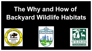 the why and how of backyard wildlife habitats youtube