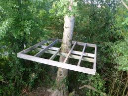 tree house look out platform ideas growth serenity orchard