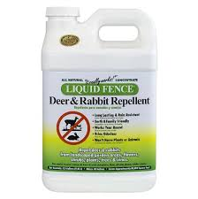Rabbit Repellent For Gardens by Liquid Fence A Good Deer And Rabbit Repellent For Your Roses