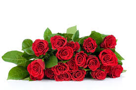 Red Rose Bouquet Red Roses Bouquet Pictures Images And Stock Photos Istock