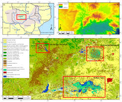 Time Change Map Remote Sensing Free Full Text Mapping Wetlands In Zambia Using