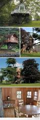 Amazing Tree Houses by 92 Best Tree Houses Images On Pinterest Architecture Places And