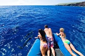 hawaii travel bureau warm up to once in a lifetime hawaii experiences so much more hawaii