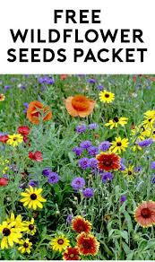 wildflower seed packets free wildflower seeds packet verified received by mail yo