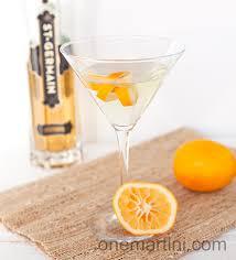 martinis png meyer lemon vodka cocktail with vanilla vodka