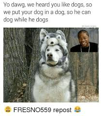 Yo Dog Meme - yo dawg we heard you like dogs so we put your dog in a dog so he