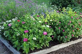 plans for cutting gardens planting map square foot gardening