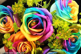 Blue And Purple Flowers Roses Are Red And Yellow And Blue And Green And Purple