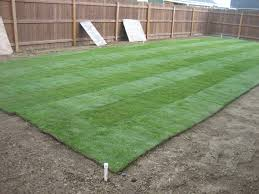unique ideas how much is sod per square foot pleasing 1000 ideas