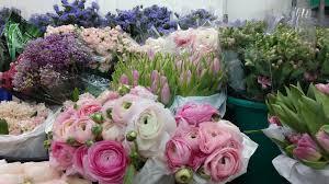 flowers international dubai international flower festival dubai international flower