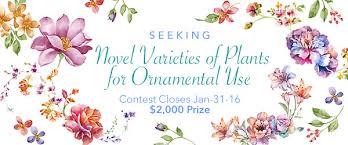 Seeking Novel Seeking Novel Varieties Of Plants For Ornamental Use
