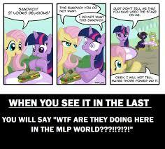 Mlp Funny Meme - mlp funny memes 28 images mlp funny google search cartoons