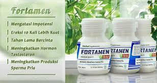 fortamen herbal obat kuat herbal alami untuk pria
