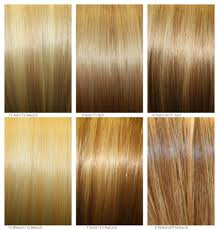 how to blend hair color poly layered blend and ombre hair extensions hair compounds inc