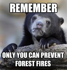 Only You Can Prevent Forest Fires Meme - remember only you can prevent forest fires confession bear quickmeme