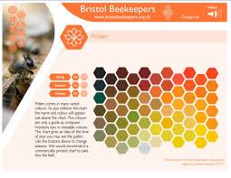 beekeeping hellochanchan