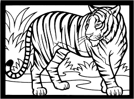 free tiger coloring pages