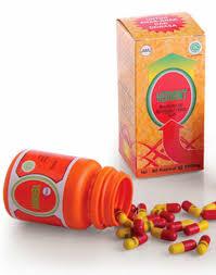 Obat Cacing Tipes jual ekstrak cacing obat vermint vermin u tipes typus 30 kapsul