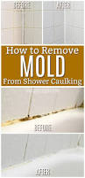 Mould On Bathroom Sealant How To Get Rid Of Black Mold In Your Shower Caulking