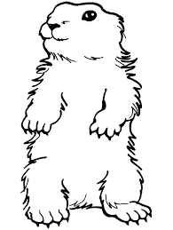groundhog coloring pages getcoloringpages