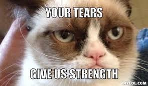Cat Meme Maker - domainku com bfr grumpy cat meme generator your tears zps471c5cbf
