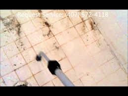 How To Clean Mold In Bathroom Vapor Steamer Kill And Remove Mold In Nasty Shower Grout Cleaning
