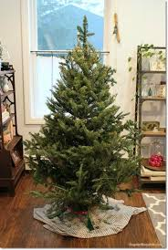 8 hacks to make your tree look and fabulous