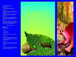 metaldehyde 6 gr snail killer high quality and effective snail