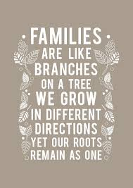5 family quotes goluputtar com