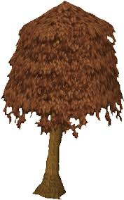 Fruit Trees Runescape - maple tree information the full wiki