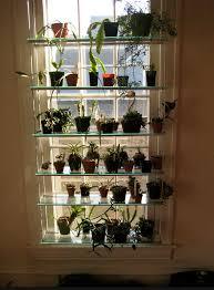 window shelving for orchids ikea hackers pinterest shelving