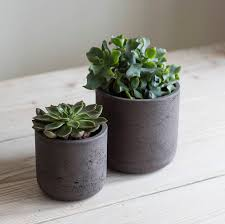 cement plant pot set of two by idyll home notonthehighstreet com
