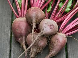 A Root Vegetable - root vegetables hgtv
