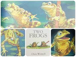 the best frogs in children u0027s books children u0027s books the guardian