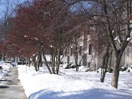 2 Bedroom Apartments Ann Arbor 27 Best Village Park Of Ann Arbor Images On Pinterest Ann Arbor