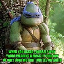 Ninja Turtles Meme - sad ninja turtle memes imgflip