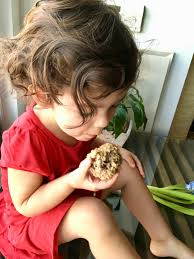 Where To Buy Lactation Cookies The Healthiest And Best Lactation Cookies Ever Eating