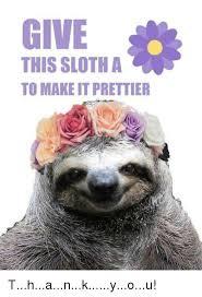 Make A Sloth Meme - give this sloth a to make it prettier thankyou meme on me me