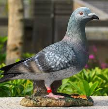 resin crafts ornaments living room pigeon decorations simulation