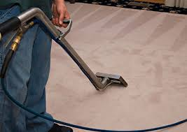 all green carpet cleaning seattle all green carpet cleaners