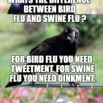 Crow Meme - bad pun crow meme generator imgflip