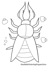 insects coloring pages nice kids colorin 7495 unknown