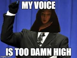 Translate Meme - google translate sings meme 36 imgflip