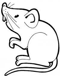 imagenes de ratones faciles para dibujar colorear ratones