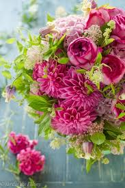 Japanese Flowers Pictures - 34 best japanese flowers images on pinterest japanese flowers