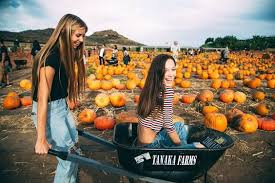 21 photo ideas to take with your friends this fall