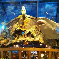 bass pro black friday hours bass pro shops 116 photos u0026 43 reviews boat dealers 1 bass