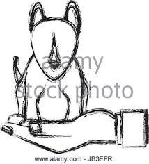 human hand holding dog pet veterinary sketch stock vector art