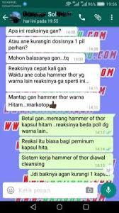 jual hammer of thor halal atau mamapuas pw qoo10 hammer of